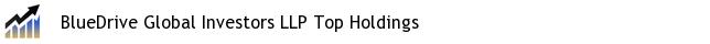 BlueDrive Global Investors LLP Top Holdings