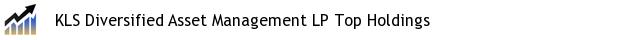 KLS Diversified Asset Management LP Top Holdings