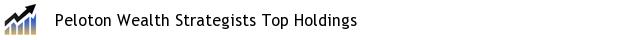 Peloton Wealth Strategists Top Holdings